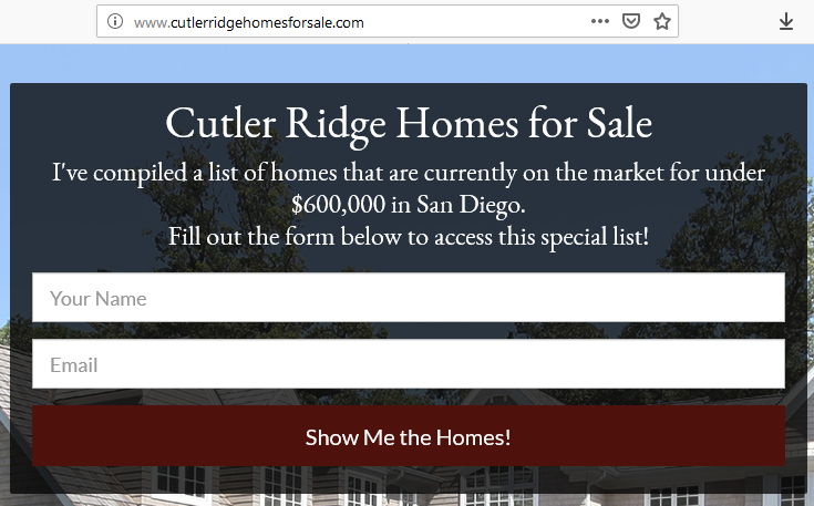 real estate landing page domain
